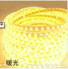 Led rope lamp, Solid Silicon cover waterproof 2