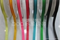涤纶织带厂 2