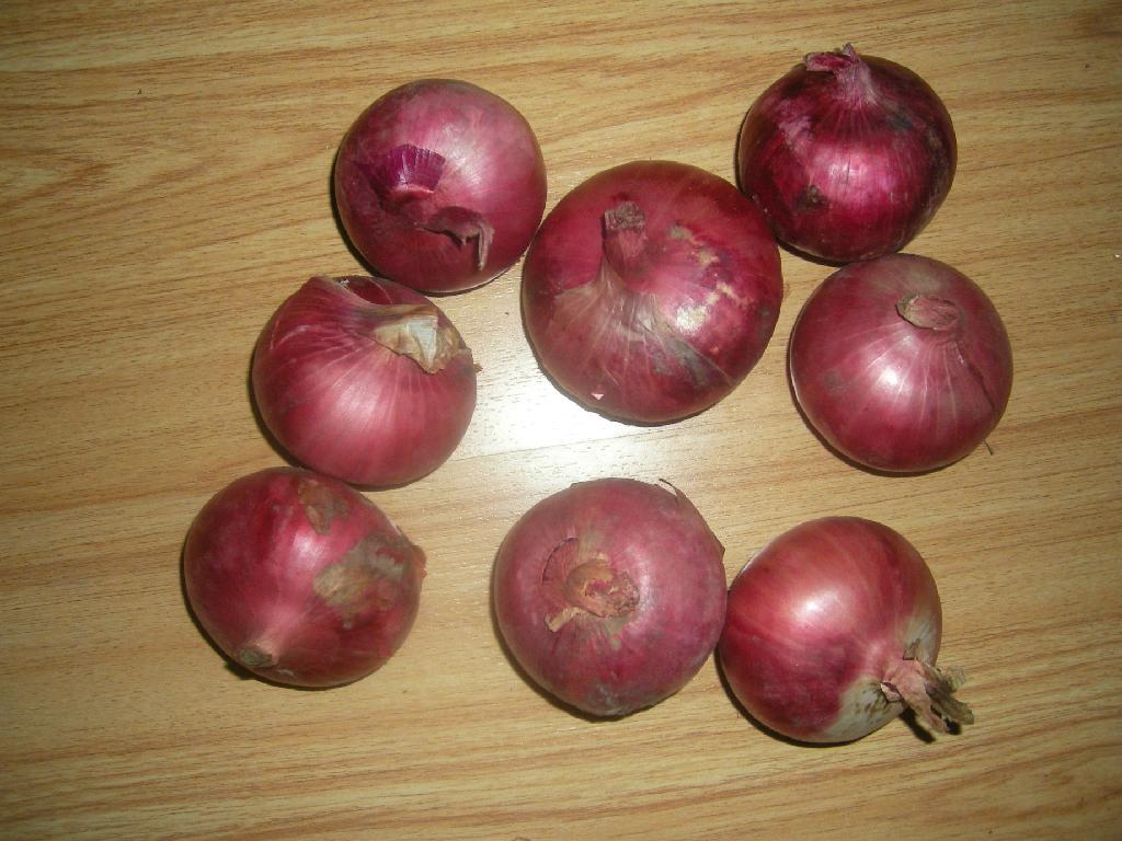 fresh red onion 2