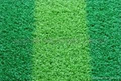 glof fairway grass,lawn,turf