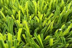 football grass,soccer field grass,sports court lawn