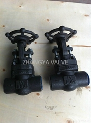 Forged Steel A105 Gate Valve 800LB