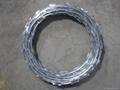 High quality of Razor Wire Fence