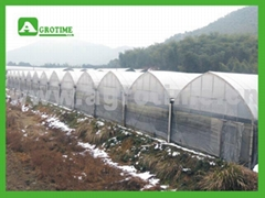 CMA1250commercial greenhouse