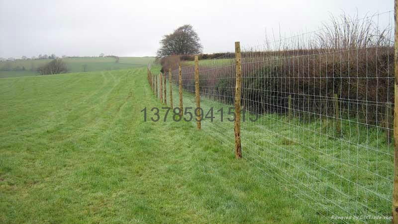 Field Fence Cattle Fence Animal Fence Sheep Fence 7 150