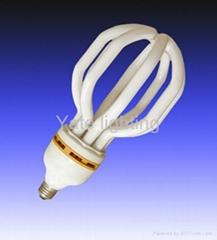 lantern energy saving lamp