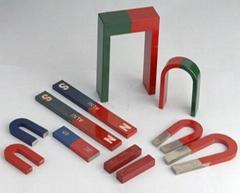 Educational Magnet