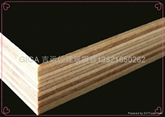 hot sell GIGA film faced plywood manufacturer 18mm