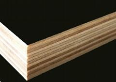 GIGA -18mm waterproof film faced plywood
