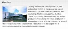 Rosey sanitary ware international co.,Ltd