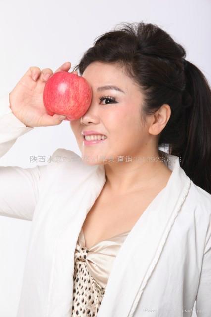 端午節水果禮盒 2