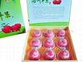西安水果禮盒 1