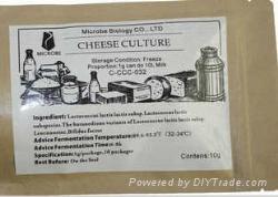 銘泰生物歐式奶酪發酵劑 1