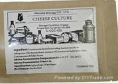 銘泰生物歐式奶酪發酵劑