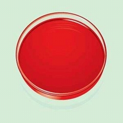 Paprika aoaleoresin