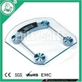 ELECTRONIC GLASS BODY SCALE 12B
