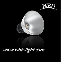 30W LED Industrial Light