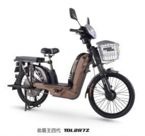 載重王電動自行車 1