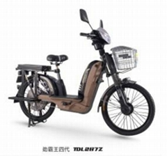 載重王電動自行車