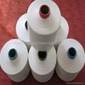 Polyester Nylon Blended Yarn