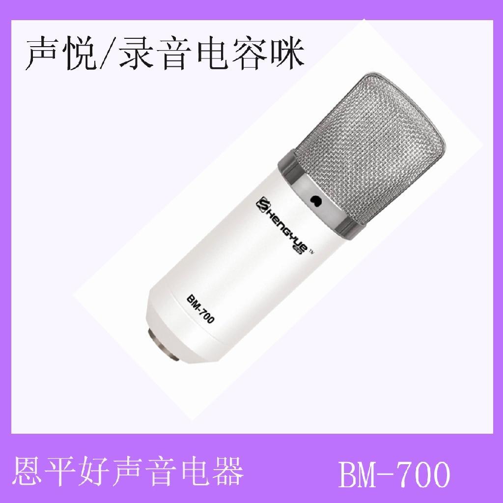网络K歌大振膜电容式录音麦克风 2