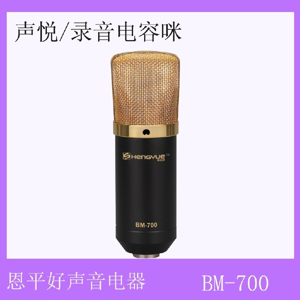 网络K歌大振膜电容式录音麦克风 4
