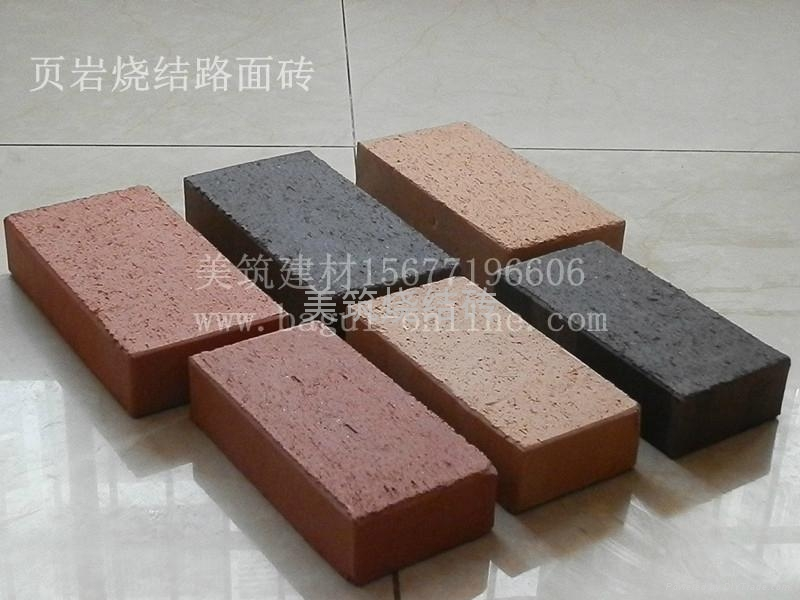 燒結路面磚 1