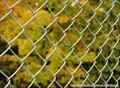 球场围网_体育场护栏网_学校操场围栏网_安平厂家 5
