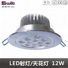 LED天花燈 12W 大功率