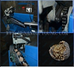 Walnut Shelling Machine Ty-300