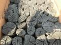 white oak charcoal 5