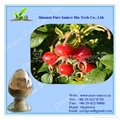 Rose Hips Fruit Extract