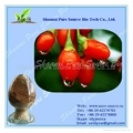 Barbury Wolfberry Fruit Extract 1
