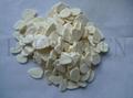 Freeze dried garlic flake