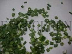 FD spring onion