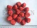 Freeze dried Strawberry 1
