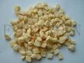 Freeze dried apple dice