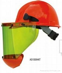 AS1000HAT防电弧面罩