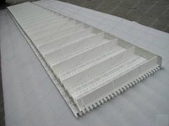 平格型塑料网带