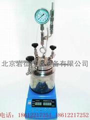 北京25ml微型數顯高壓反應釜