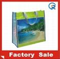 Factory customize pp woven bag