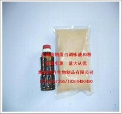 水解植物蛋白粉(HVP)  潍坊利升