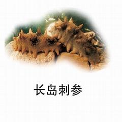 Dried seacucumber.