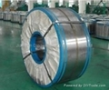 Hot dip galvanized steel strips 1