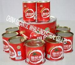tomato paste 4.5kg