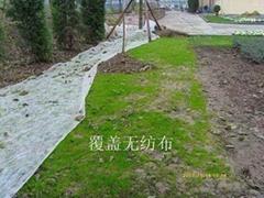 聖頤草坪無紡布