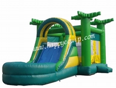 Cheap Mini Inflatable Water Slides for Family