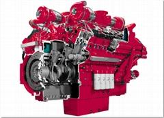 Imported Cummins Diesel Generator