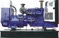 型号齐全康明斯发电机 1
