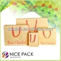 2013 Newest Luxury Paper  Carry Bag